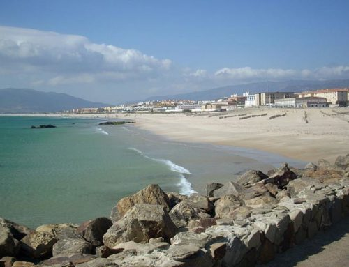 The best plans to spend the day in Tarifa, Cádiz